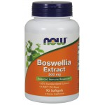 Boswellia Extract 500 mg - 90 Softgels